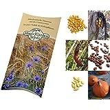 Bio-Saatgut-Set: 'Die 3 Schwestern': Mais, Bohnen und Kürbis für ein traditionelles Milpa-Beet als Samen in schöner Geschenk-Verpackung
