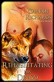 Rehabilitating His Dingo (Wolves of Stone Ridge Book 23)