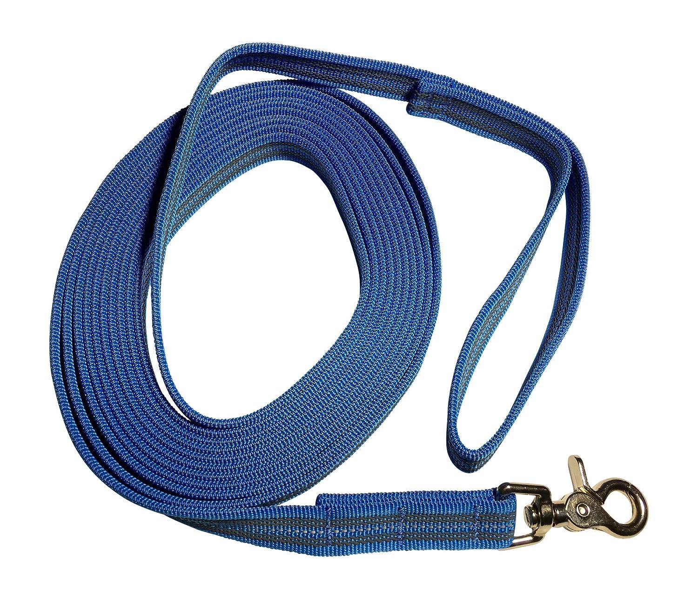en Azul /Correa de perro DE GOMA CINTA REFLECTANTE// correa de entrenamiento // correa de adiestramiento =  5/Metro DOGS and MORE con correa de mano