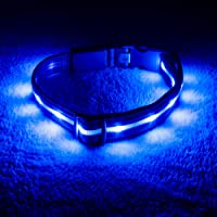 Blazin' Safety Led Dog Collar USB Rechargeable with Water Resistant Flashing Light, Small, Blue
