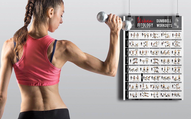 Urban Fitology Póster de Gimnasia Hombres y Mujeres - 40 Ejercicios Doble Laminado Full Body Fitness Guide - Perfecto Entrenamiento Rutina gráfico para ...