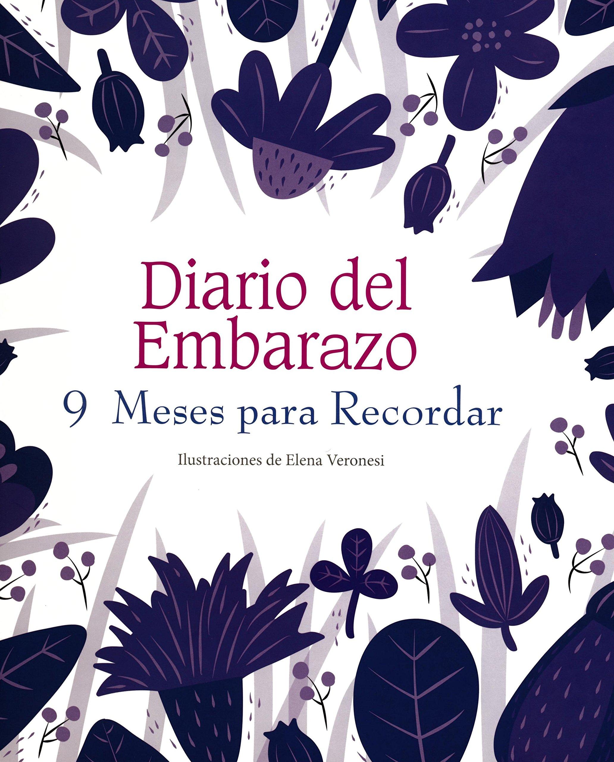 Diario Del Embarazo. 9 Meses Para Recordar: Amazon.es: AAVV ...