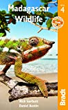 Madagascar Wildlife (Bradt Guides)