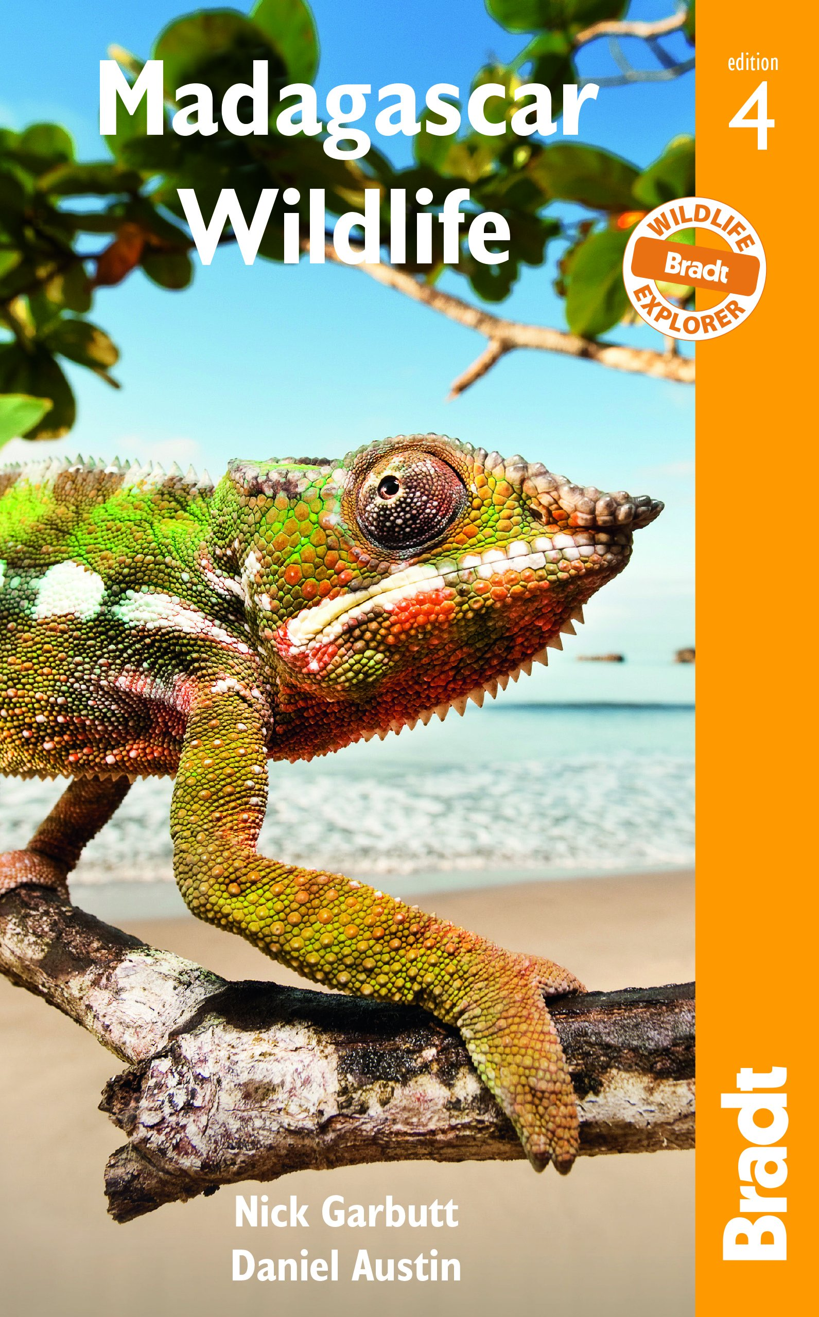 Madagascar Wildlife  A Visitor's Guide  Bradt Wildlife Guides