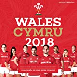 Welsh Rugby Union Official WRU Water Bottle: Amazon.co.uk