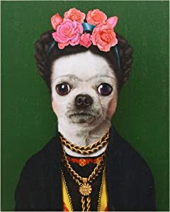 """Empire Art Direct Pets Rock Mexico Graphic Wrapped Dog Canvas Wall Art, 20"""" x 16"""" x 2"""", Ready to Hang"""
