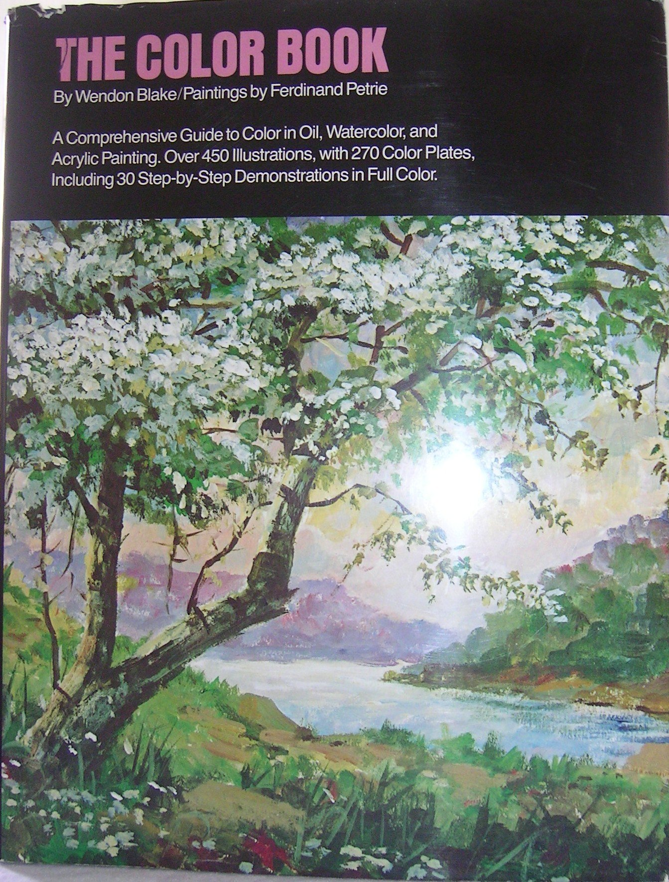 the color book wendon blake 9780823006946 amazoncom books - Painting Color Book