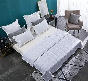 WarmKiss Luxurious Down Blanket , Hypoallergenic 600 Fill Power Light Weight Duvet Insert, 100% Cotton Downproof Brushed Shell (White,Queen,13OZ)