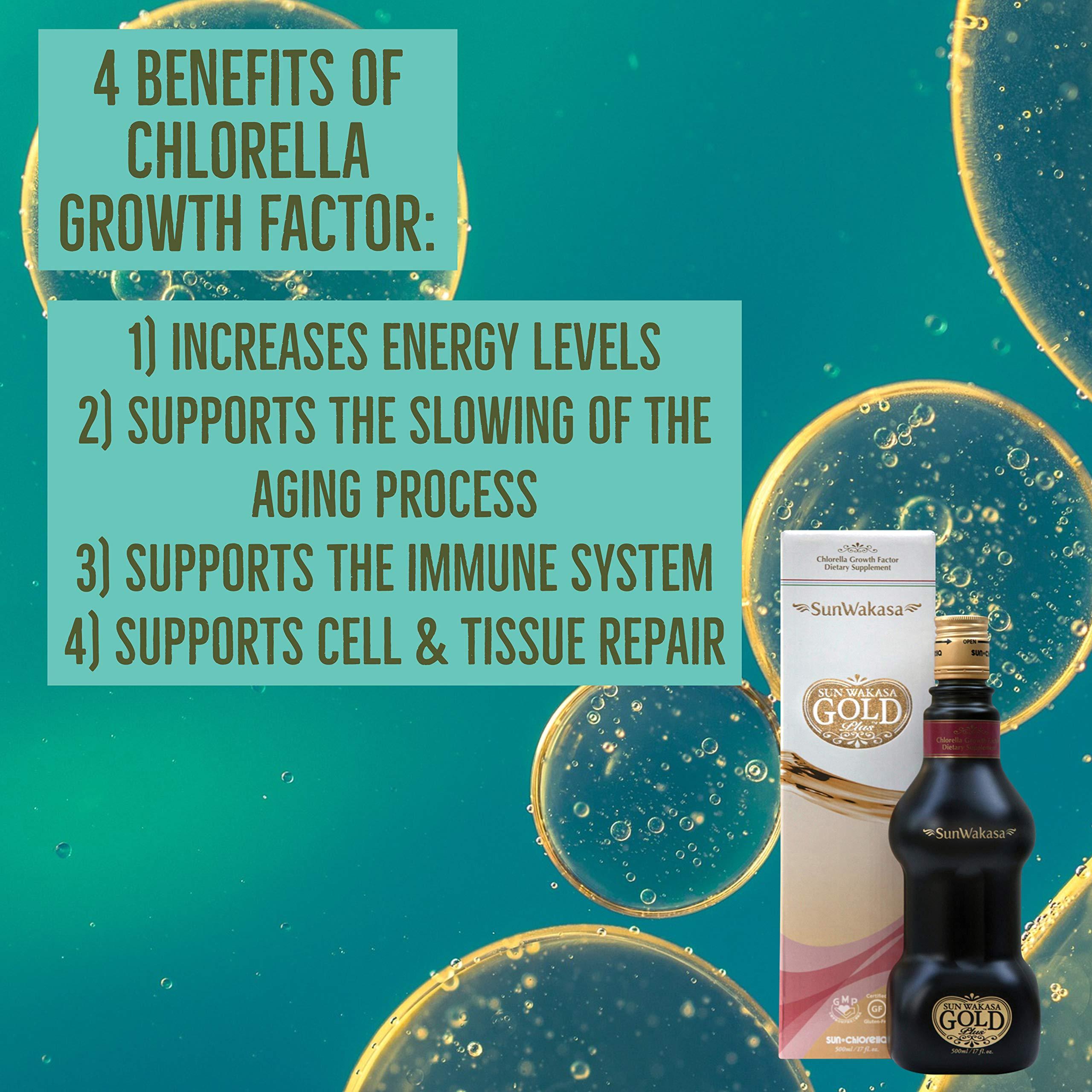 Sun Chlorella- Sun Wakasa Gold with Chlorella Growth Factor- Support Your Health On A Cellular Level (17 Fluid Ounce) by Sun Chlorella (Image #7)