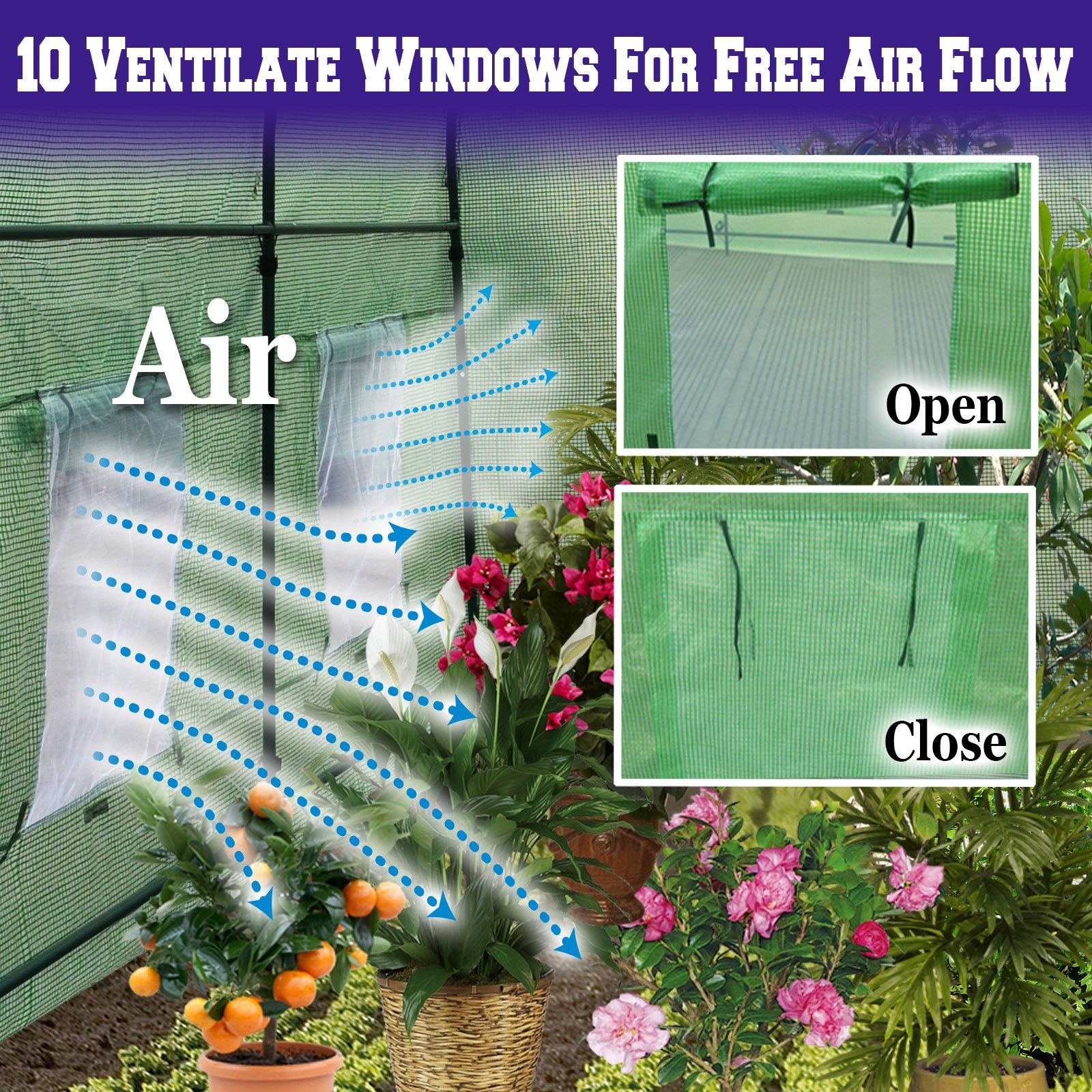 BenefitUSA Hot Green House 24.6'X10'X7'H Larger Walk In Outdoor Plant Gardening Greenhouse