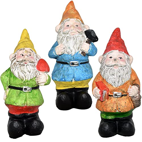Gnome Garden: Lawn Decorative Garden Gnomes: Amazon.com