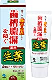 生葉(しょうよう) 歯槽膿漏を防ぐ 薬用ハミガキ ハーブミント味 100g (リーフレット付き)