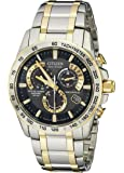 Citizen Men's AT4004-52E Perpetual Chrono A-T Two-Tone Eco Drive Analog Quartz Stainless Steel Silver Watch