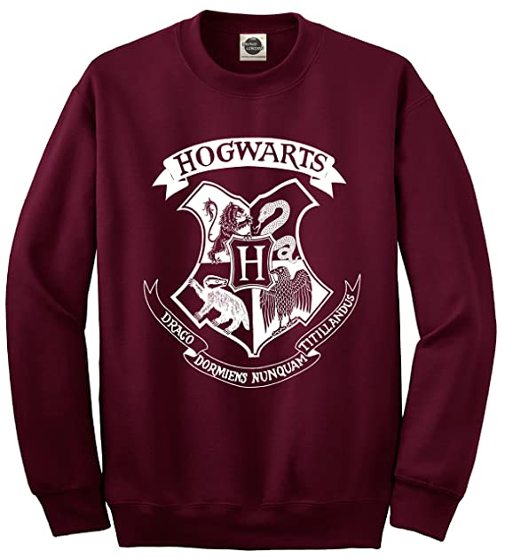 Sudadera Unisex con Logotipo de Hogwarts - Harry Potter Hogwarts School of Witchcraft and Wizardry: Amazon.es: Ropa y accesorios
