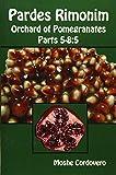 Pardes Rimonim, Orchard of Pomegranates - Vol.2, Parts 5-8