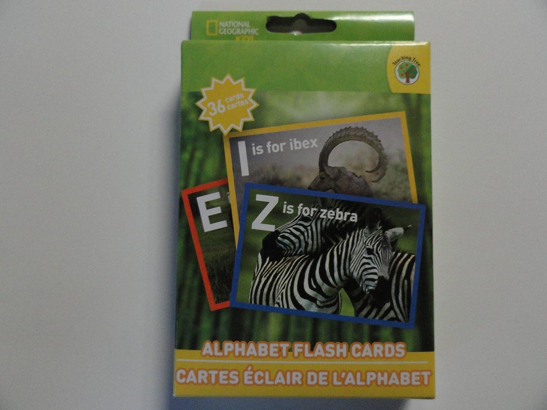 amazon com national geographic alphabet flash cards toys u0026 games