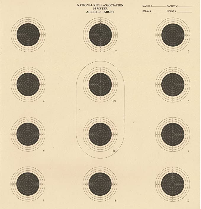 graphic about Printable Nra Pistol Targets identify DOMAGRON 10 Meter 12 Bullseye Air Rifle Emphasis Formal NRA Focus AR5/10