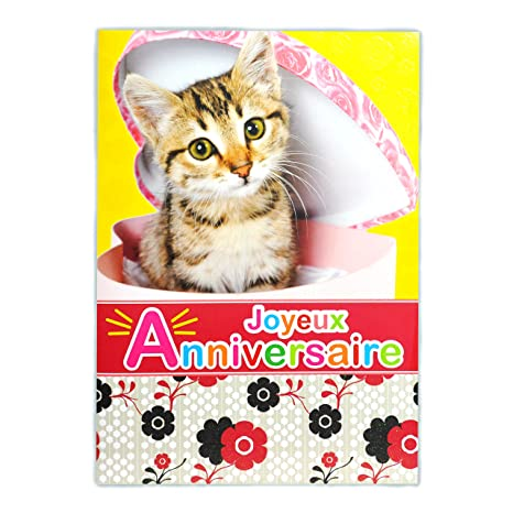 Afie Mx 3010 Grande Carte Maxi A4 Joyeux Anniversaire Chat Chaton Mignon Félin Animal