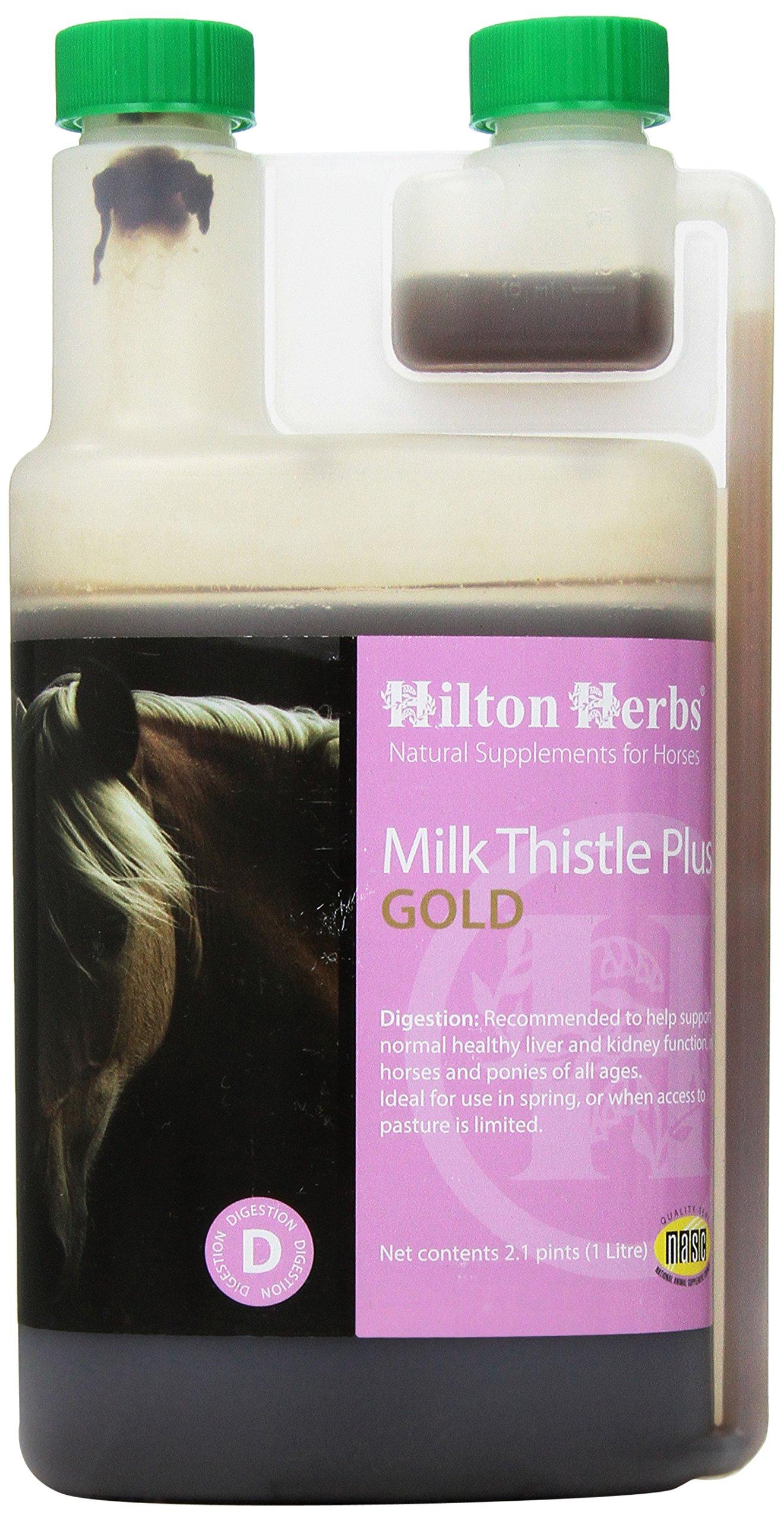 Hilton Herbs Milk Thistle Plus Gold Liquid Herbal Detox Supplement for Horses, 2.1pt Bottle