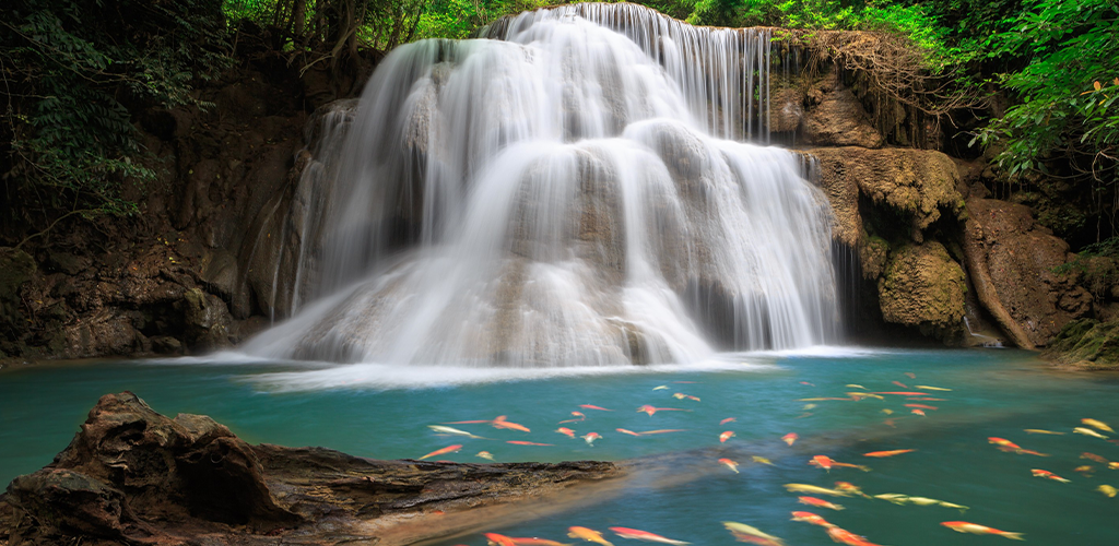 Amazon Com Waterfall Live Gif Wallpapers Appstore For Android