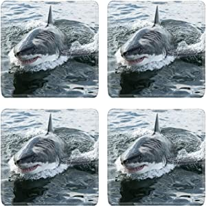 Luxlady Natural Rubber Square Coasters IMAGE ID: 32729223 Endangered great white Shark breaching the water in the ocean