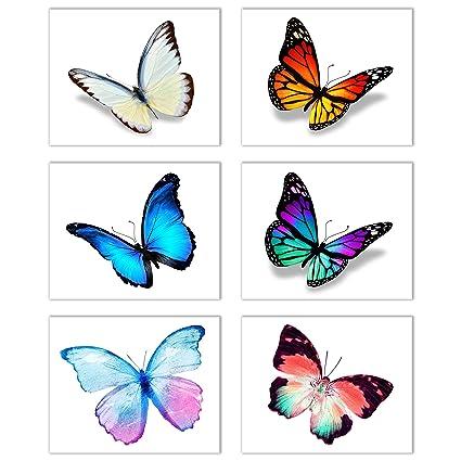 Amazon Com Butterfly Inspiration Wall Art Decor Set Of 6 Beautiful