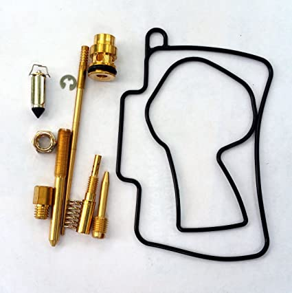 Amazon com: Carburetor Rebuild Kit with O-Ring Gasket 430