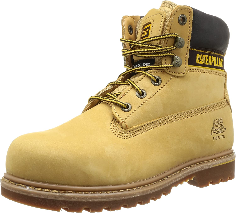 Cat Footwear Men's Holton Sb Ankle