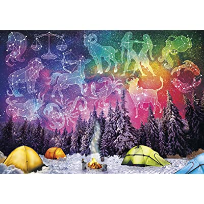 Buffalo Games - Art of Play Collection - Follow Your Destiny - 500 Piece Jigsaw Puzzle: Toys & Games