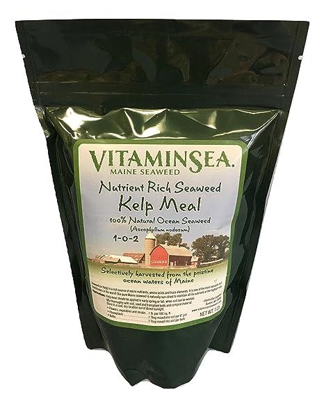 Kelp comida, USDA Certified Organic Plant fertilizantes ...