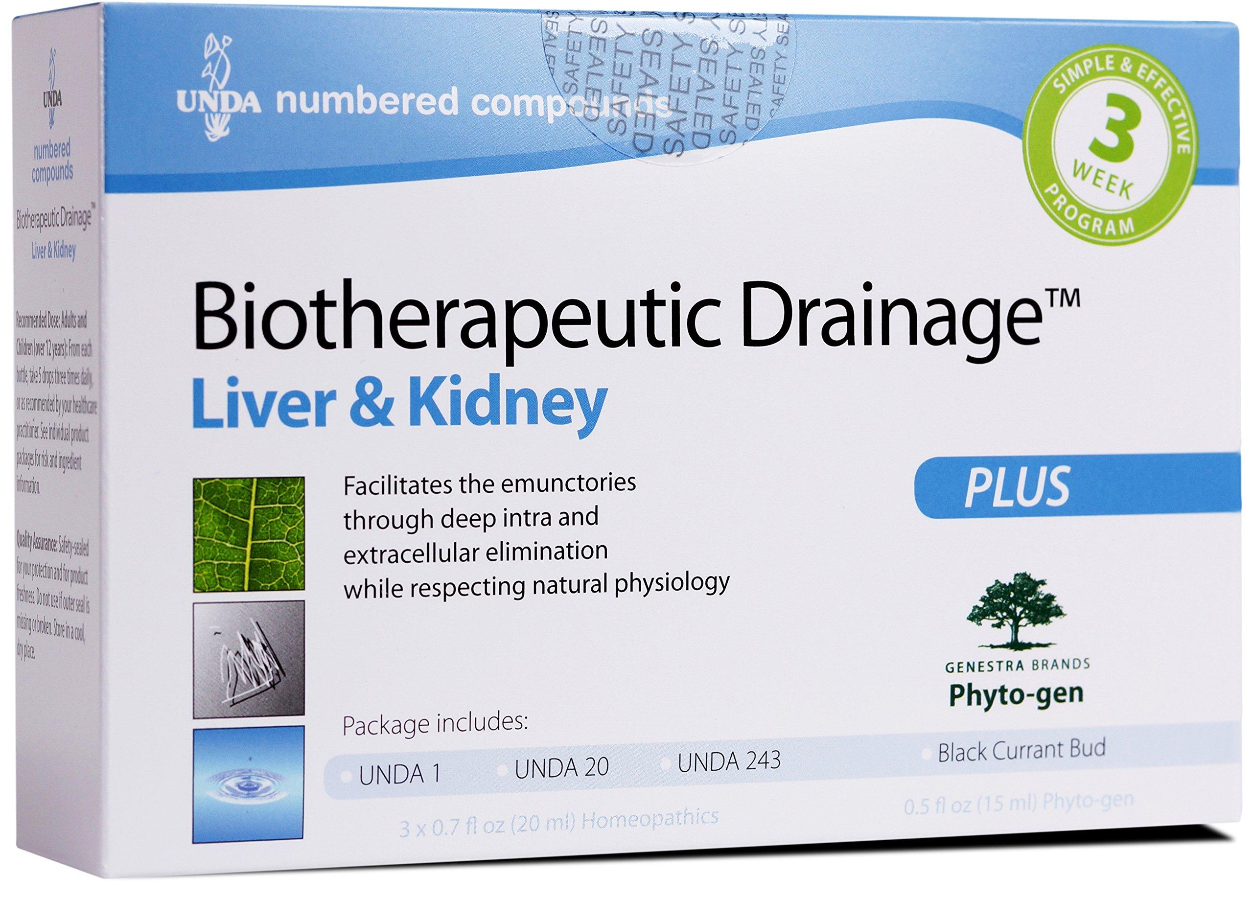 UNDA - Biotherapeutic Drainage - UNDA 1, UNDA 20, UNDA 243 & Black Currant Bud to Support Liver & Kidney*^ - 1 Package by UNDA