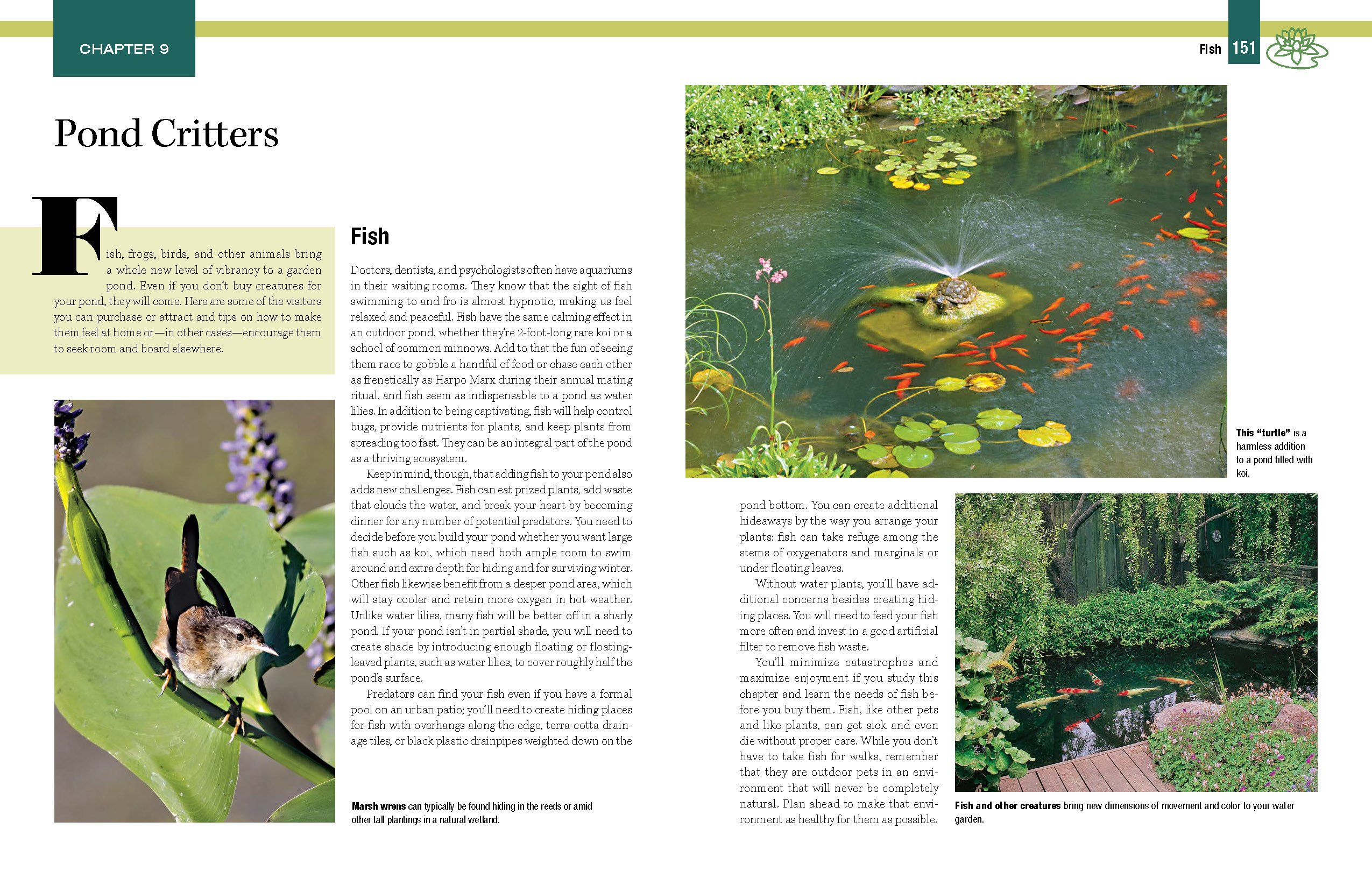 garden ponds fountains u0026 waterfalls for your home landscaping