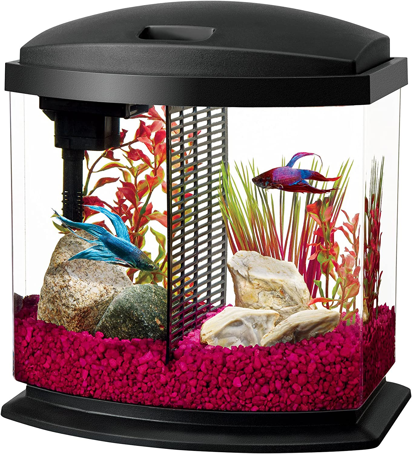 Aqueon LED MiniBow Aquarium Starter Kit with LED Lighting