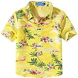 SSLR Big Boys Pink Flamingos Button Down Casual Short Sleeve Hawaiian Shirt