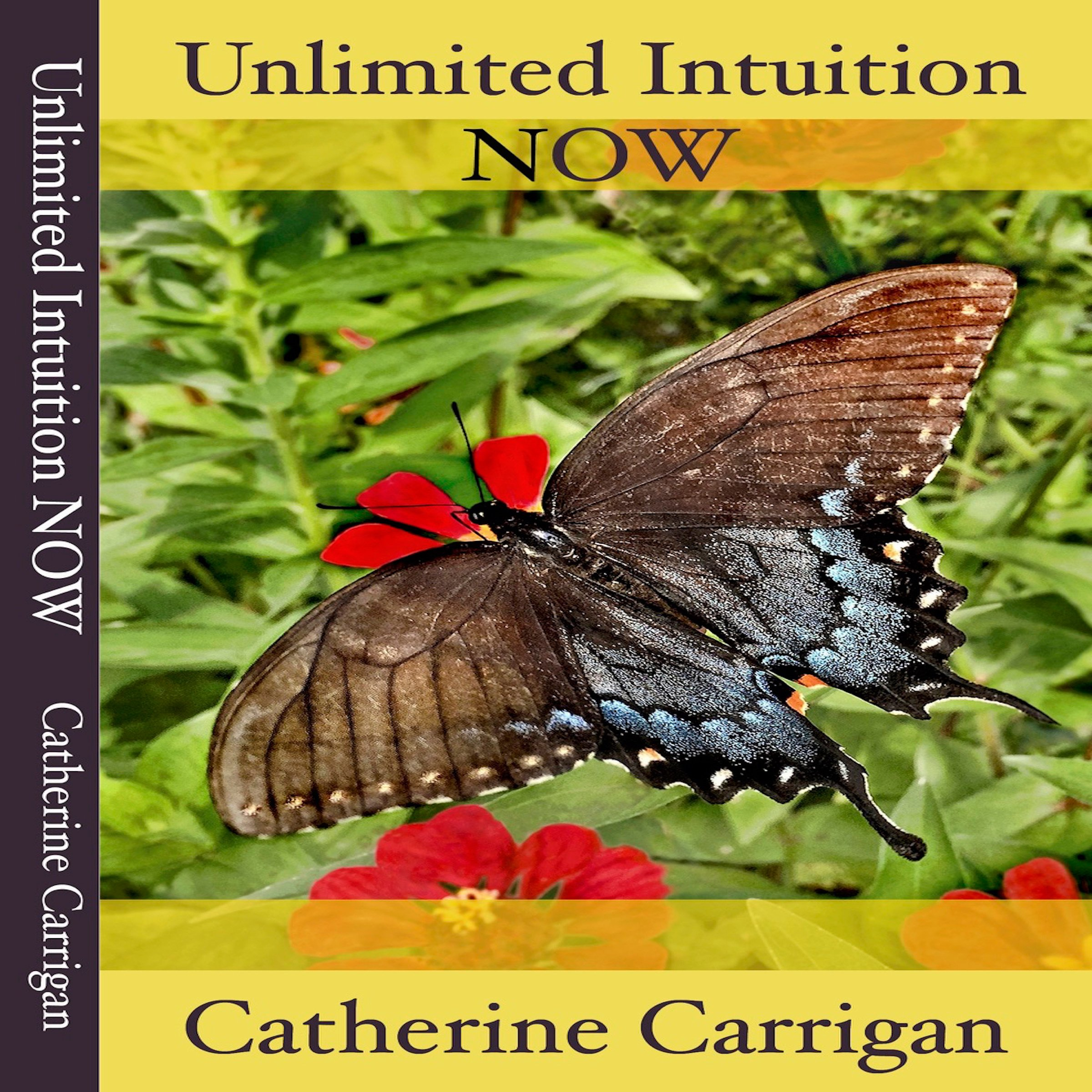 Unlimited Intuition NOW