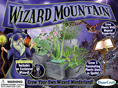 Amazon Com Dunecraft Wizard Mountain Domed Terrarium Toys Games