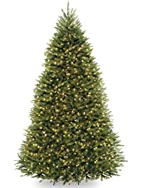 Images Of Christmas Trees.Christmas Trees Amazon Com