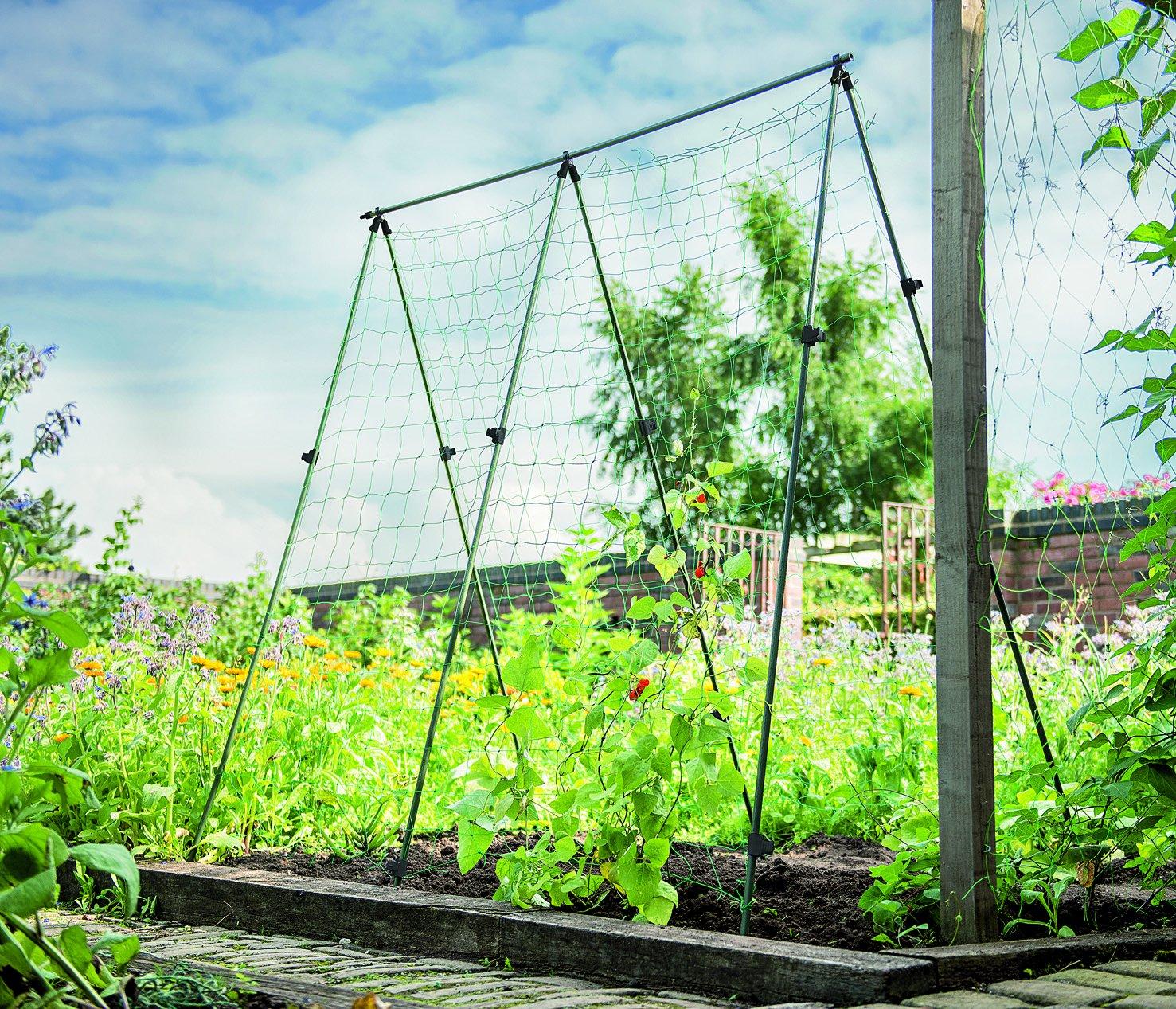Gardman Bean Frame Support: Amazon.co.uk: Garden & Outdoors