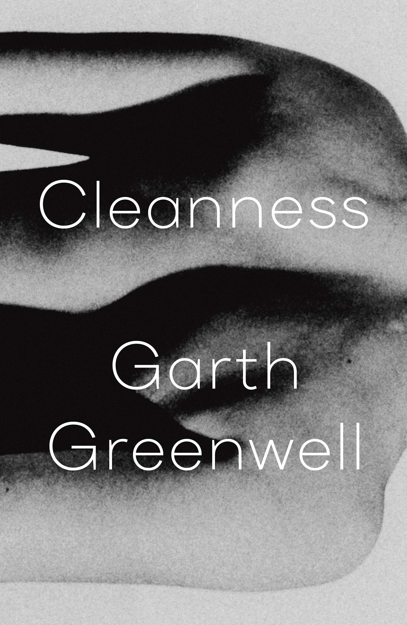 Cleanness: Greenwell, Garth: 9780374124588: Amazon.com: Books