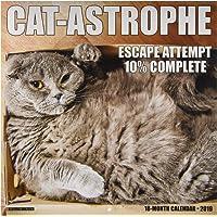 Cat-Astrophe 2019 Wall Calendar