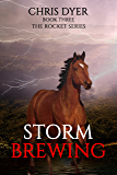 Storm Brewing: Book Three The Rocket Series