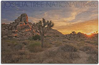 product image for Lantern Press Joshua Tree National Park, California - Sunrise (10x15 Wood Wall Sign, Wall Decor Ready to Hang)