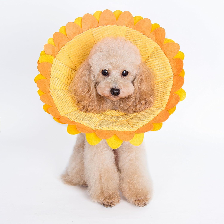 Best for Sensitive Dogs: Alfie Pet Noah Alternative to Elizabethan Dog Collar