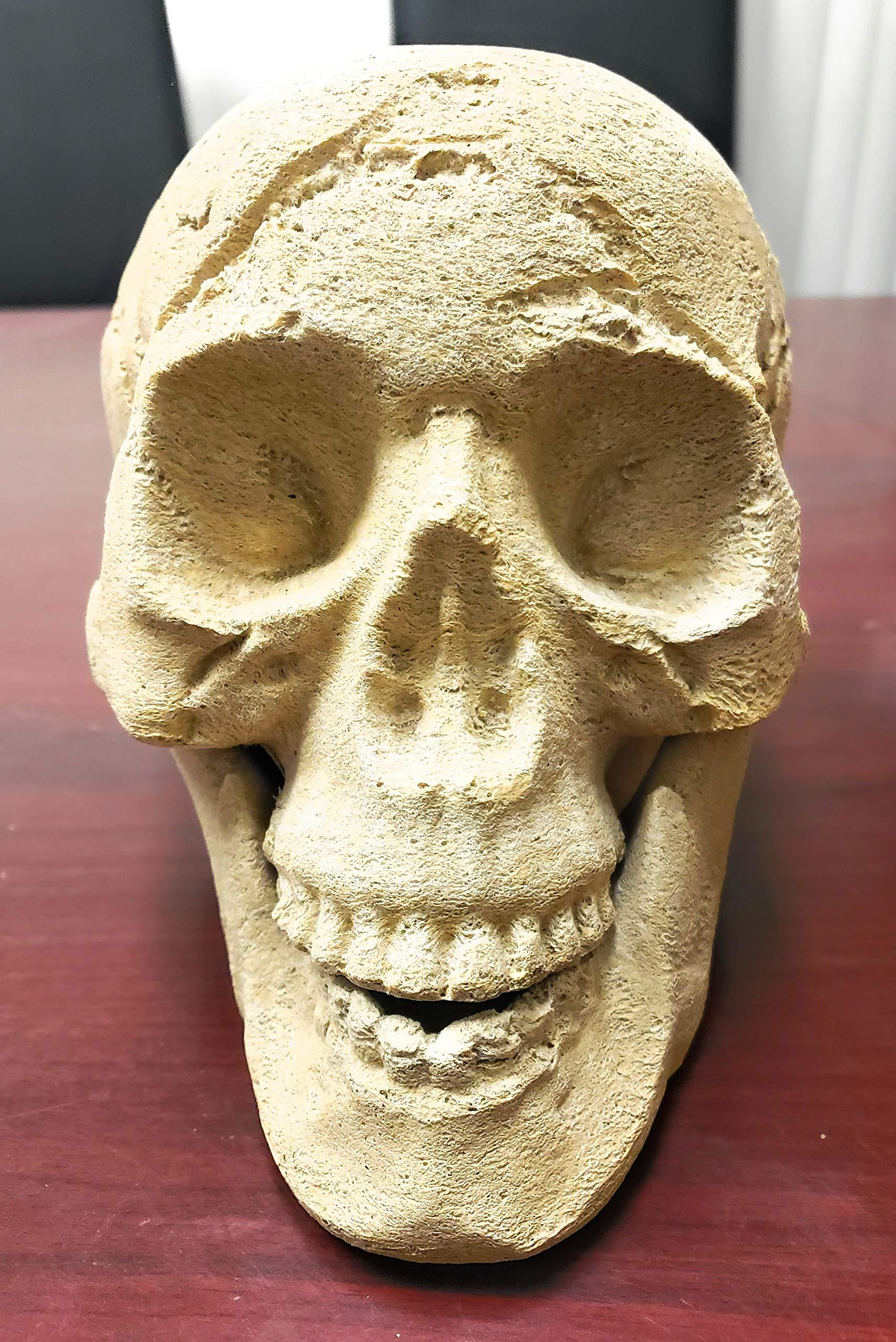 Natural Color Ceramic Fireplace Skull - Designed for Fireplaces and Fire Pit Ceramic Skull by Fire On Glass