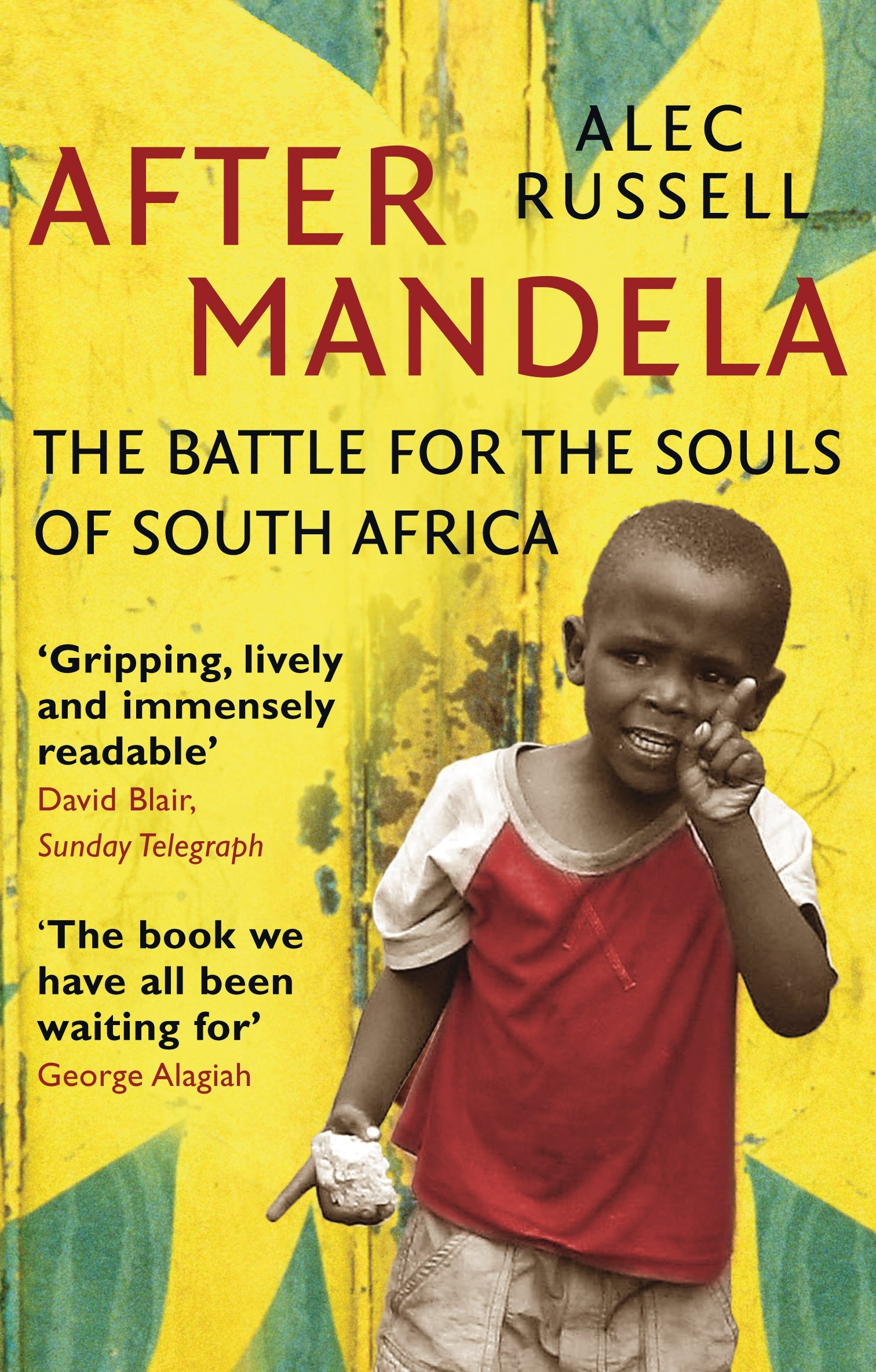 After Mandela: The Battle for the Soul of South Africa PDF