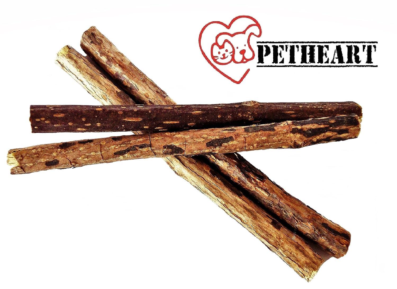 Petheart Matatabi de chat Sticks de soin des dents, nettoyage dentaire