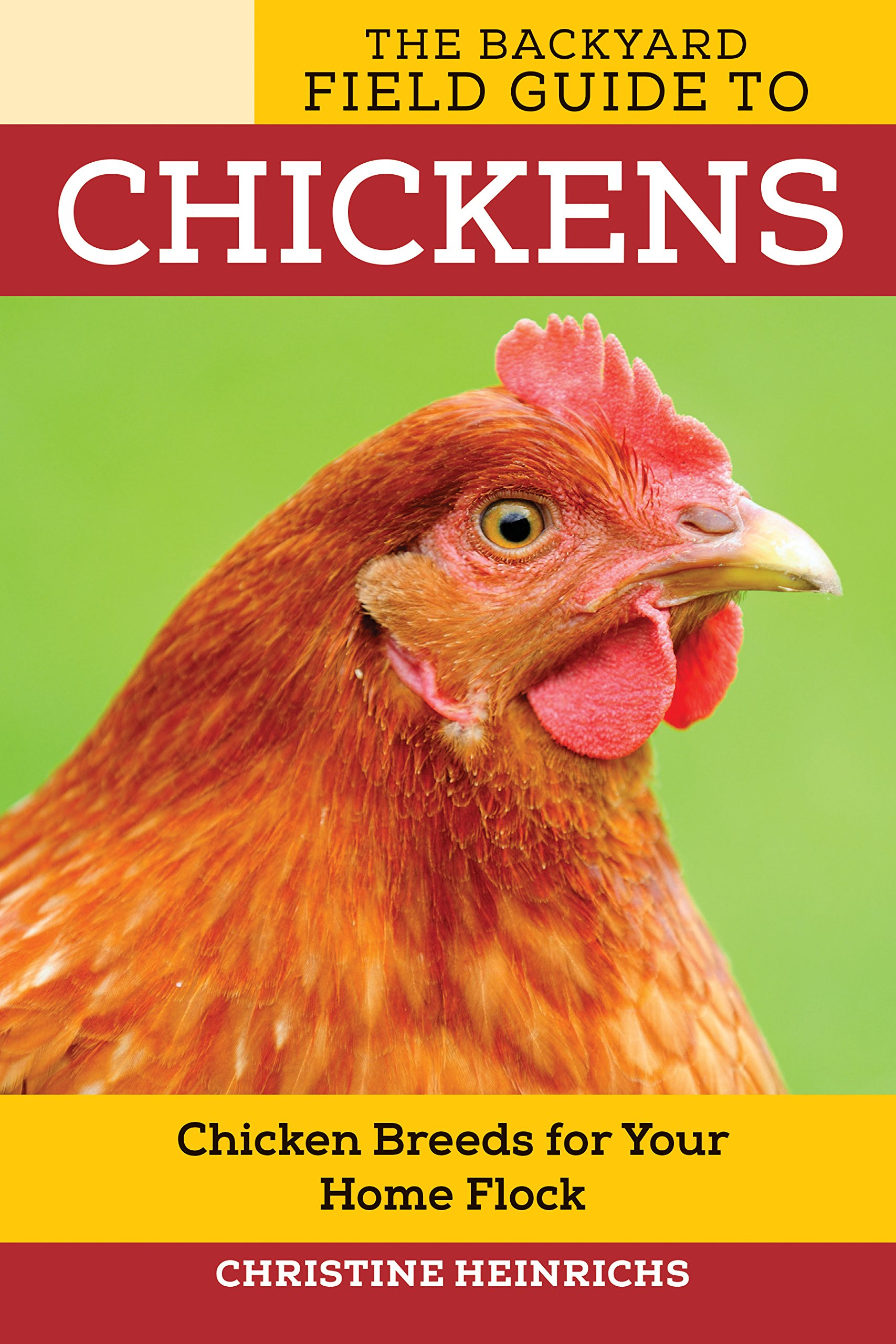 the backyard field guide to chickens chicken breeds for your home