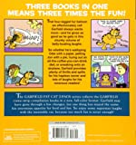 Garfield Fat Cat 3-Pack #3: A Triple Helping of