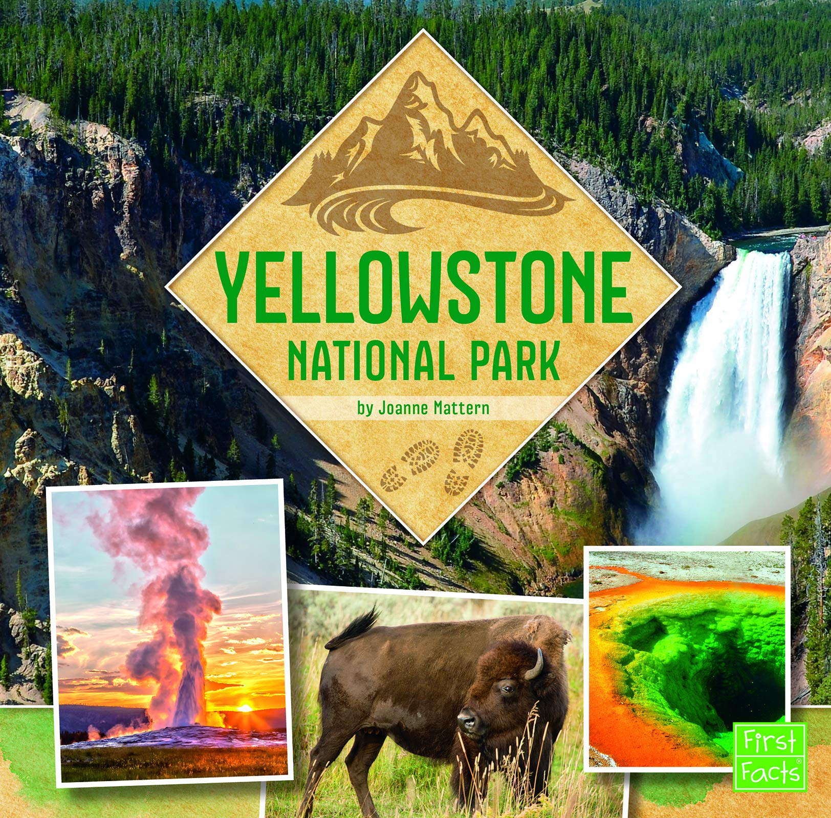 Yellowstone National Park U S National Parks Field Guides