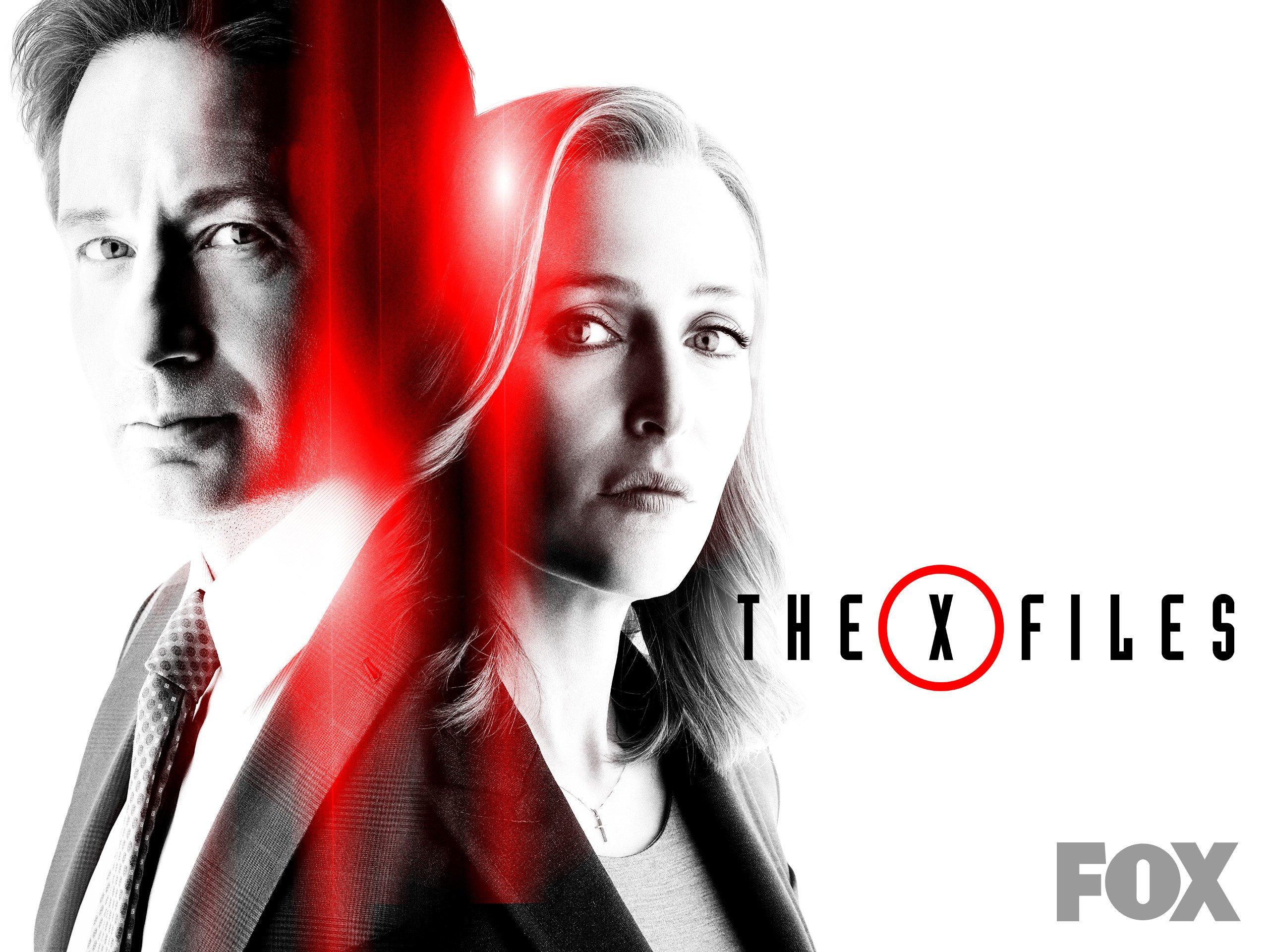 the xfiles files